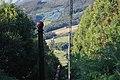 Pericuito - panoramio (2).jpg