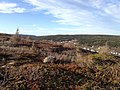 Petty Harbour-Maddox Cove, NL A0A, Canada - panoramio (8).jpg