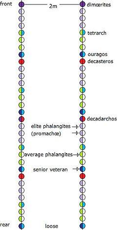 Phalanx - Wikipedia