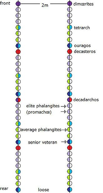 Phalanx - Two standard Macedonian enomotiæ (32 men each) in loose formation 2m. apart (32 ranks).