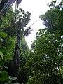 Phra Nang beach P1120039.JPG