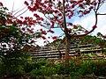 Phuket 2012 (8481642667).jpg