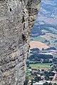 Pietra di Bismantova, dalla sommità - panoramio (2).jpg
