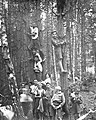 PikiWiki Israel 2071 www.ganshmuel.org.il פולין-חניכי השומר הצעיר במושבת קיץ 1925.jpg