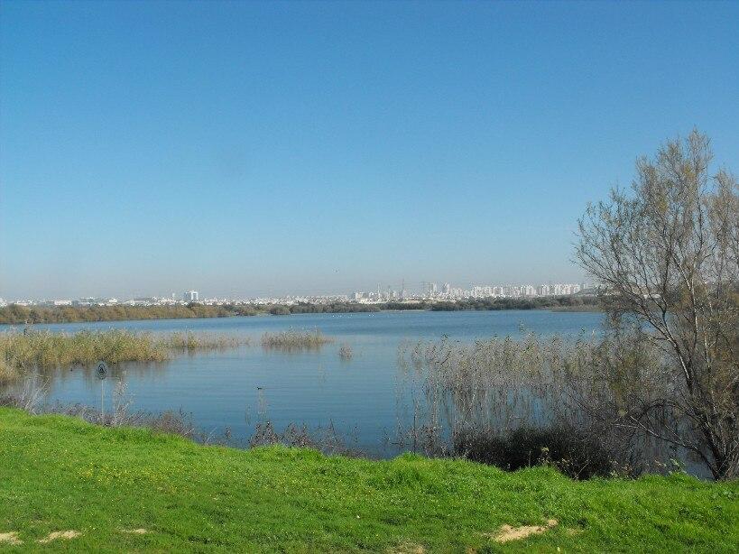 PikiWiki Israel 8055 The lake in Rishon-Lezion Israel