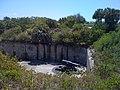 Pinellas County, FL, USA - panoramio (7).jpg