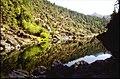 Pistol River in the Kalmiopsis, Rogue River Siskiyou National Forest (23916535855).jpg