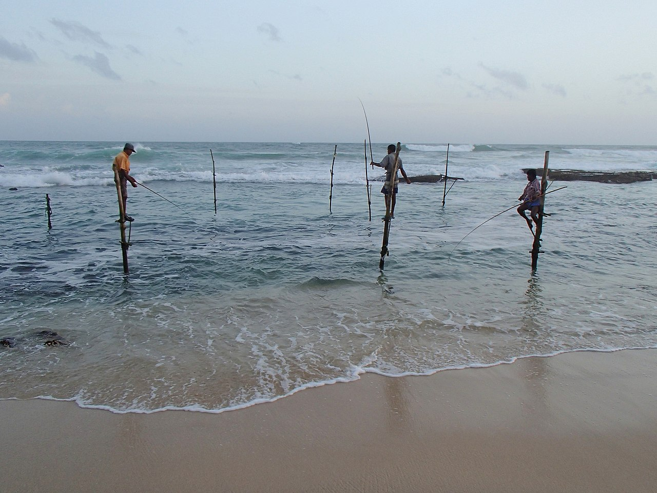File pole fishing sri wikimedia commons for Sri lanka fishing
