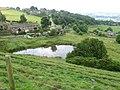 Pond at Thurstonland - geograph.org.uk - 1374045.jpg