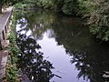 Pond at the Recreation Ground - geograph.org.uk - 1499617.jpg