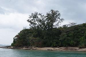 Pulau Seringat - Pulau Seringat, photographed in February 2011