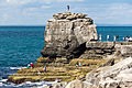 Pulpit Rock, Isle of Portland, Dorset-9470.jpg