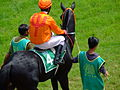Pune Race Jockey2 by Nitin-Jadhav.JPG