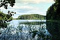 Punkaharju-06-Wald-See-1975-gje.jpg