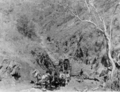 Queensland State Archives 3385 Irvinebank Mining Companys horse drawn wagon Montalbion 1914.png