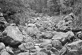 Queensland State Archives 443 Back Creek Beechmont November 1933.png
