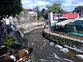Río Orizaba en Veracruz 04.jpg