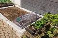 Rösrath Germany Gardening-03.jpg