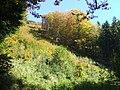Rúbaň - panoramio.jpg