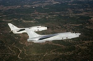 RF-8Gs VFP-206 in flight near Bergstrom AFB 1986.JPEG