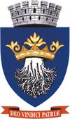 ROU BV Brasov CoA.png