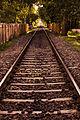 Rail Road.jpg