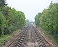 Railway at Fleet - geograph.org.uk - 170810.jpg