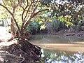 Redenção - State of Pará, Brazil - panoramio (17).jpg