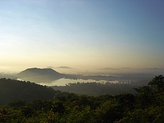 Vandalur Reserve Forest