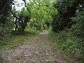 Ridgeway West of Ogbourne St. George - geograph.org.uk - 1016767.jpg