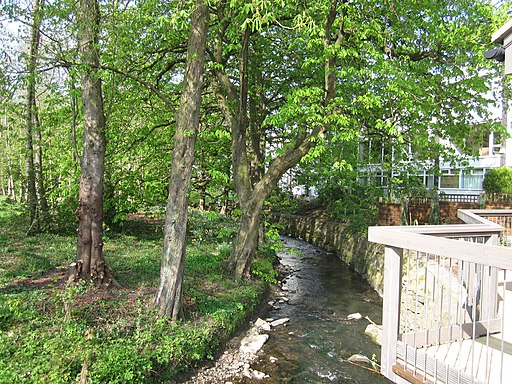 River Bollin at rear of Bollin Grove - geograph.org.uk - 2361668