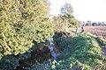 River Chelmer - geograph.org.uk - 1002107.jpg