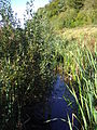 River Cong (1).JPG