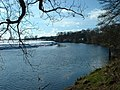 River Ribble near Hothersall Hall - geograph.org.uk - 133816.jpg
