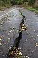 Road Closed - geograph.org.uk - 1547728.jpg