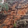 Rock Walls Alligator Gorge, Mount Remarkable National Park. 01.jpg