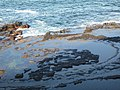 Rocks at Beecroft Peninsula.jpg