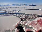 Ross Sea, Summer 2016 18.jpg