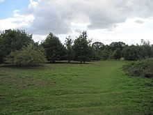Rowley Lodge Field 1.JPG