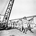 Royal Engineers, Haifa חיל הנדסה, חיפה-ZKlugerPhotos-00132iv-090717068512703a.jpg