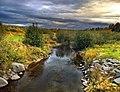 Ruisseau Bresse Ascot - panoramio.jpg