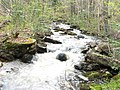 Ruisseau vers le lac Comtois - panoramio.jpg