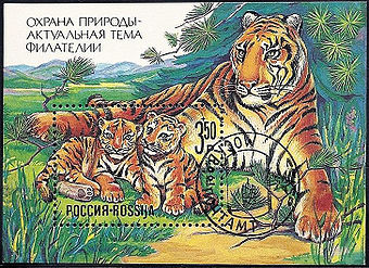Russia stamp 1992 3r.jpg