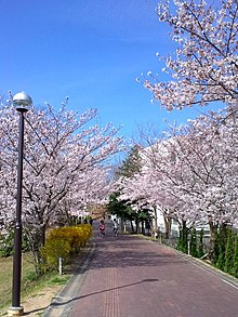 Prefecture university osaka Osaka Prefecture