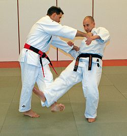 Judoka demonstrating Kosoto-gari technique