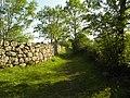 Salers , pays de pierre et de grands espaces, situé entre Dordogne et Puy-Mary - panoramio (22).jpg