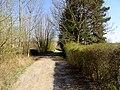 Schlegelweg Pirna (33877331666).jpg