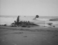SevenMileBeach1946 2.png