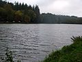 Shearwater Lake.jpg