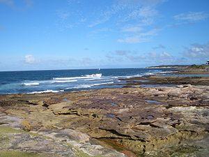 Shelly Beach (Cronulla) - Image: Shelly Beach Cronulla 1